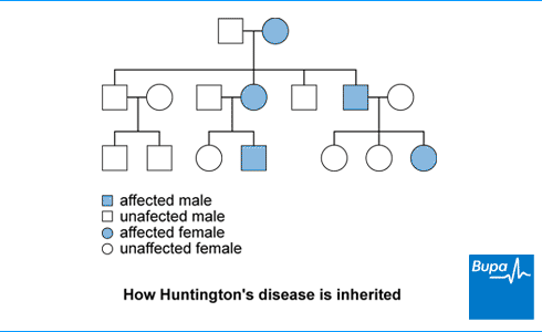 Huntington's disease | Health Information | Bupa UK